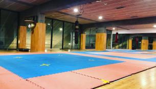 Abrimos la sala 4 del Multiusos para uso libre de los tatamis